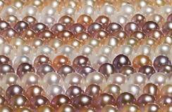 Fond de perle Images stock