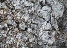 Fond de pierre criquée Image stock