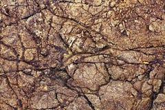 Fond de pierre de Brown, texture sans couture de roche Photographie stock libre de droits