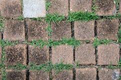 Fond de pierre et d'herbe Photo libre de droits