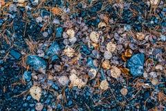 Fond de pierre et de roches Photographie stock libre de droits