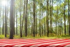 Fond de pique-nique de forêt photo libre de droits