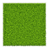 Fond de place d'herbe verte Photo stock