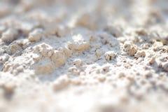 Fond de plage sablonneuse pour l'été Texture de sable Photo stock