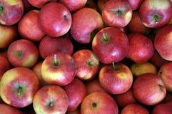 Fond de pomme rouge rassemblée photo stock