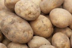 Fond de pommes de terre Photos libres de droits