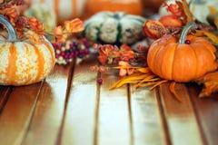 Fond de potiron d'automne Photo stock