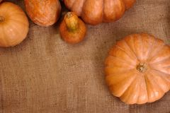 Fond de potiron d'automne pour scrapbooking Images libres de droits