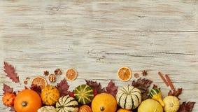 Fond de potiron de thanksgiving photos libres de droits
