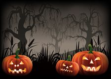 Fond de potirons de Halloween image stock