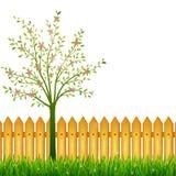 Fond de ressort avec l'herbe verte, l'arbre de floraison et le jardin f Image libre de droits