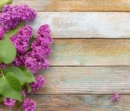 Fond de ressort avec le bouquet des fleurs lilas des plats en bois Image stock