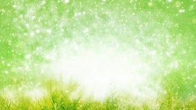 Fond de ressort, milieux d'été, herbe photos stock