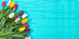 Fond de ressort ! Tulipes colorées d'un bouquet sur le fond en bois bleu Carte de voeux de vacances pour la Saint-Valentin, le jo photographie stock