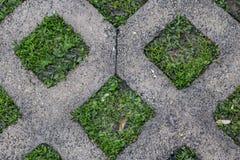 Fond de revêtement bétonné en forme de diamant avec l'herbe s'élevant dans les ouvertures un jour très humide - intéressant et co image stock