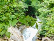 Fond de rivière de DOF Images stock
