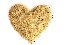 Fond de riz de Gaba, riz brun germé, propertie médicinal Photographie stock libre de droits