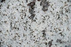 Fond de roche aux nuances du gris Photos stock