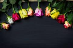 Fond de roses de jour de femme Photos stock