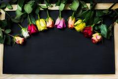 Fond de roses de jour de femme Images stock