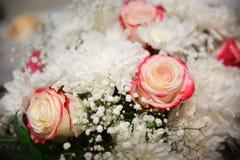 Fond de roses roses et blanches, profondeur de champ Photo stock