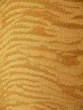 Fond de sable Photos stock