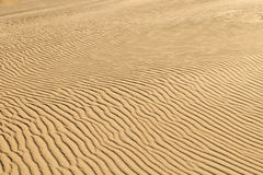 Fond de sable de désert photos libres de droits