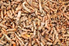 Fond de safran des indes ou safran des Indes frais Longa Photos stock
