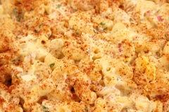 Fond de salade de macaronis Photographie stock libre de droits