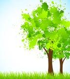 Fond de source avec l'arbre Photos stock