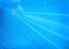 Fond de Spiderweb Photos libres de droits