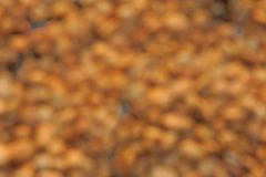 Fond de tache floue photo stock