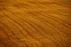 Fond de terres cultivables Photographie stock libre de droits