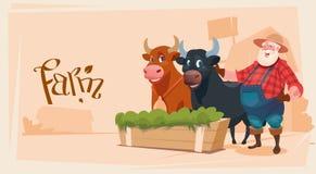 Fond de terres cultivables de Breeding Animals Cow d'agriculteur illustration stock