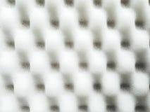 Fond de texture d'éponge de mousse Photographie stock libre de droits