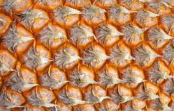 Fond de texture d'ananas Image stock