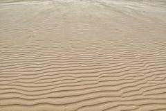 Fond de texture de dunes de sable Image stock