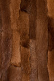 Fond de texture de fourrure photo stock