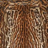 Fond de texture de fourrure de léopard Photos libres de droits