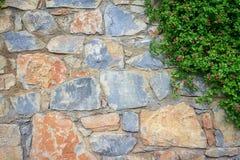 Fond de texture de mur avec des feuilles Images libres de droits