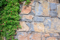 Fond de texture de mur avec des feuilles Photo stock