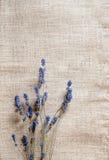 Fond de texture de sac Images stock