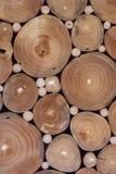 Fond de texture de tronçons d'arbre Photographie stock libre de droits