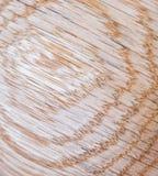 fond de texture en bois de chêne rouge dans la macro pousse de lentille photo libre de droits