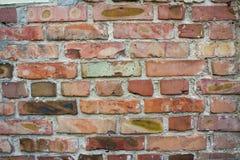 Fond de texture de mur de briques Modèle orange de grunge de briques Photo stock