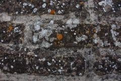 Fond de texture de mur de briques Modèle orange de grunge de briques Photographie stock