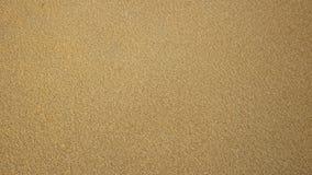 Fond de texture de petite sciure en bois de couleur jaune photos libres de droits