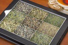 Fond de thé vert de feuilles mobiles sur le comprimé Photographie stock