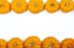 Fond de thanksgiving de potiron d'automne Images libres de droits