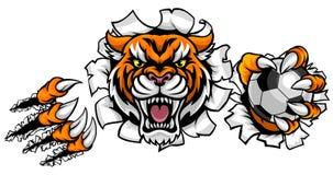 Fond de Tiger Holding Soccer Ball Breaking Illustration de Vecteur